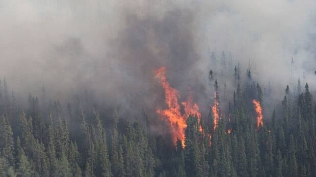 A forest fire burns near Timmins, Ont., on Thursday. Fire crews are now dealing with a new fire spotted north of Highway 101, the Ministry of Natural Resources said Friday.