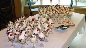 hi-hospital-trifle-4col
