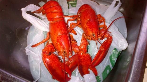 The government of P.E.I. wants more Islanders to make lobster a staple in their diet.