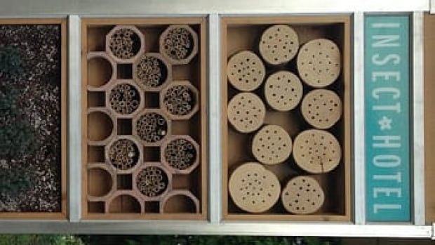 Nathan Lee and Hartley Rosen helped build the insect hotel.