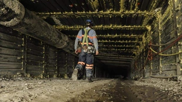Rotating shift workers, like those in Sudbury-area mines, are at more risk for obesity, a new report says.