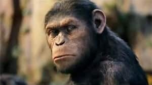 ii-300-planet-of-apes