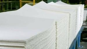 li-pulp-and-paper-620