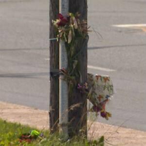 nl-flowers-pole-kenmount-road-20130823