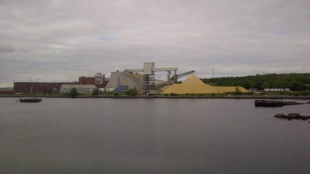 The company that owns the Bowater Mersey plant says it can't use a $25-million loan yet.