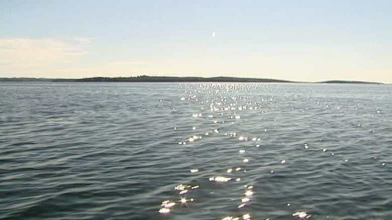 Forget the snow: Nova Scotia's oceans hit 14 C this week