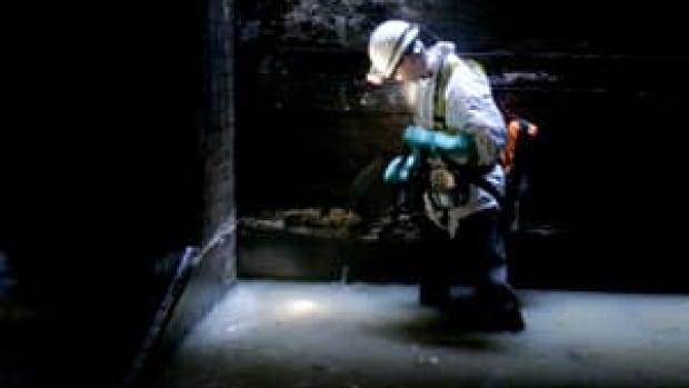 sewer-inspector-london