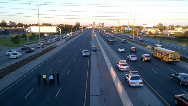 Toronto police investigated after a driver reported seeing unidentified remains on the Gardiner Expressway.