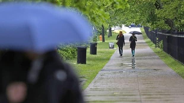 Teddy forecast to bring heavy rain, wind to parts of Atlantic Canada   CBC News
