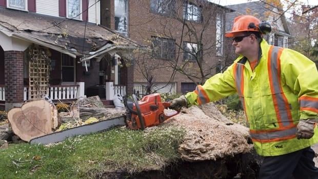 Windblown trees caused most of the damage overnight Monday as Toronto caught the remnants of Hurricane Sandy, which made landfall on the U.S. Atlantic coast.