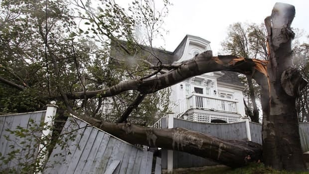 In 2010, high winds from Hurricane Igor toppled trees in St. John's. Igor is considered the worst storm of tropical origin to have hit Newfoundland in 75 years.