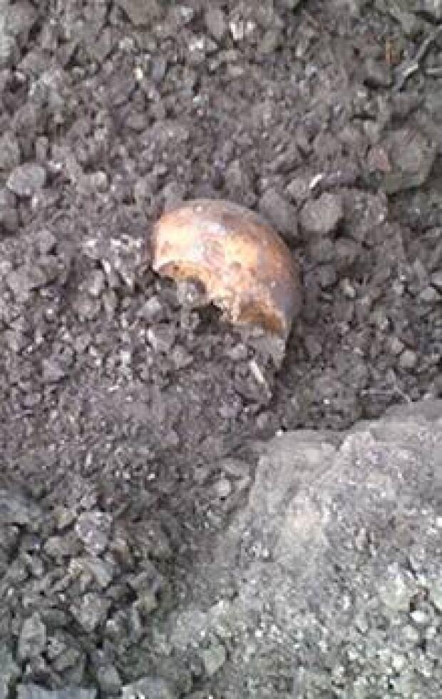 si-skull-220-cp