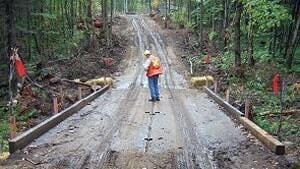 mi-bush-road-worker-300