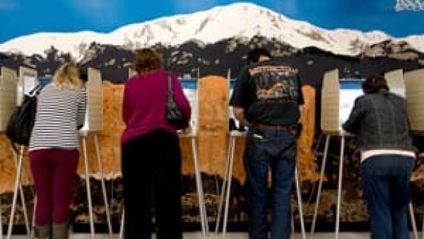 ii-votersdemo2035420813