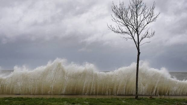 Storm surge hits a small tree as winds from Hurricane Sandy reach Seaside Park in Connecticut. Nova Scotia Power crews are heading to the state to help restore power.