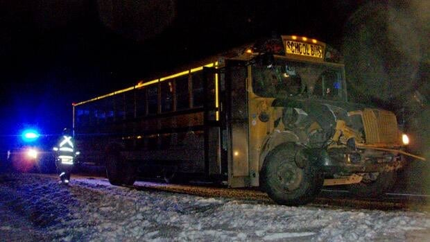 Two dozen boy scouts had their travel plans delayed when their bus hit two moose near Smoky Lake Friday night. No one was injured, and a local bus driver volunteered to take them the rest of the way.