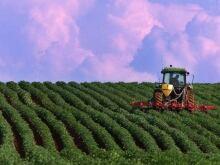 hi-farm-safety-852