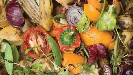 Cost of compost machinery too high for southern Manitoba communities
