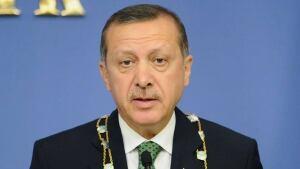 hi-turkey-pm-852-3408186