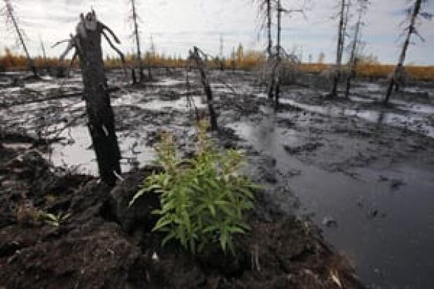 si-300-russia-oil-spill-02541143