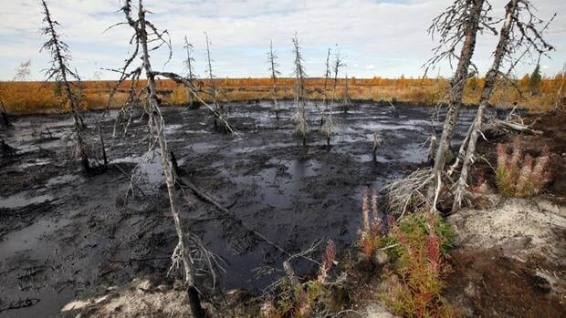 This Sept. 10, 2011 photo shows the aftermath of an oil spill near the town of Usinsk, in Komi Republic. Komi is one of Russia's largest and oldest oil provinces but ruptures in aging pipelines and leaks from decommissioned oil wells make oil spills in the region routine. Environmentalists estimate at least 1 percent of Russia's annual oil production, or 5 million tons is spilled every year.