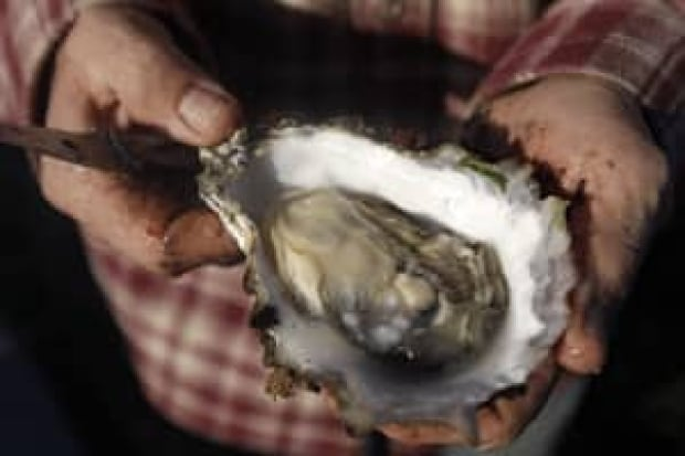si-oyster
