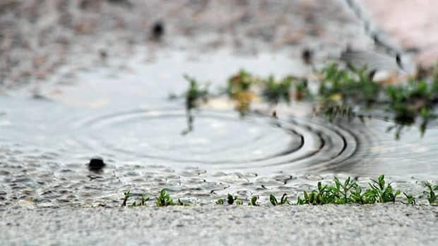 Rainfall amounts up to 40 mm are expected in parts of Southern Ontario Monday and Tuesday, Environment Canada says.