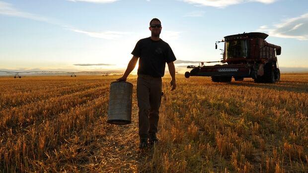 Alberta should be more food self-reliant post-pandemic, expert says   CBC News