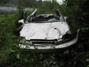 Mooose crash