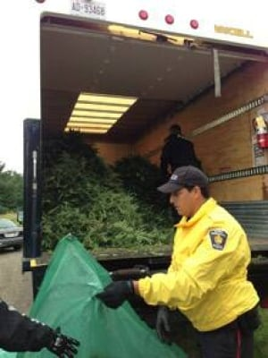 si-richmond-pot-bust-cbc-22