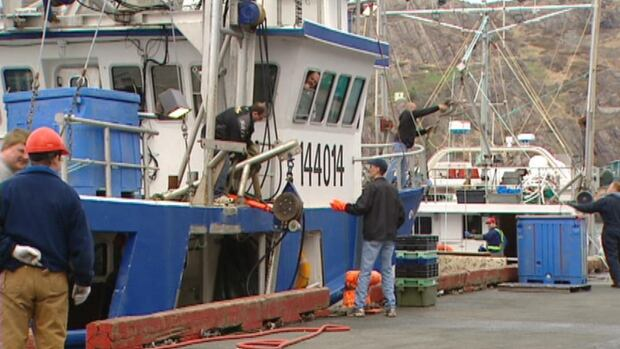 Crew members work on a fishing vessel in Newfoundland and Labrador.