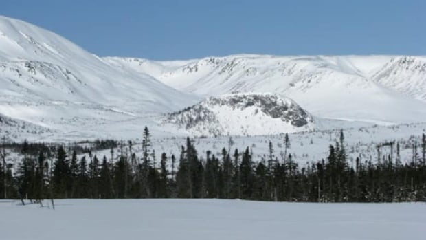 A 21-year-old man died from injuries sustained in a snowmobile accident in the Lewis Hills area.