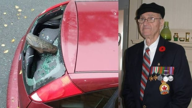 Second World War veteran Danial Cotie had his window smashed out in his 'brand new to him' car.