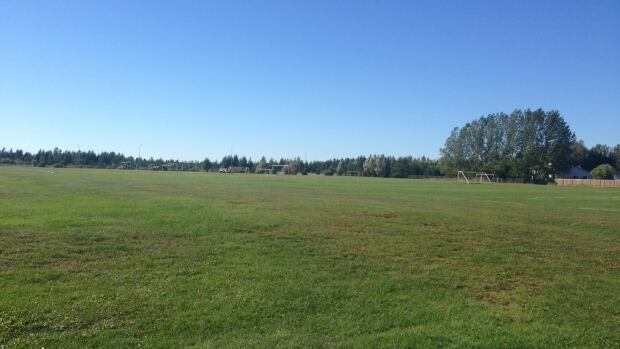The James Street play field in Thunder Bay is one of many sports fields in the city that will be assessed by a consultant. The city's parks department says any repairs coming out of the consultant's report will be done starting in 2015.