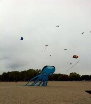 Windfest 2013