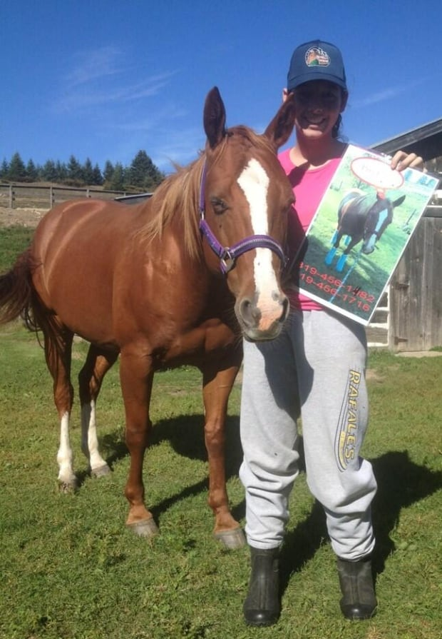 Princess Missing Horse Found