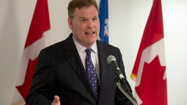 Foreign Affairs Minister John Baird's office says the government is still holding consultions on the international small arms treaty and suggested that Canadian firearms owners' rights are one of the concerns.