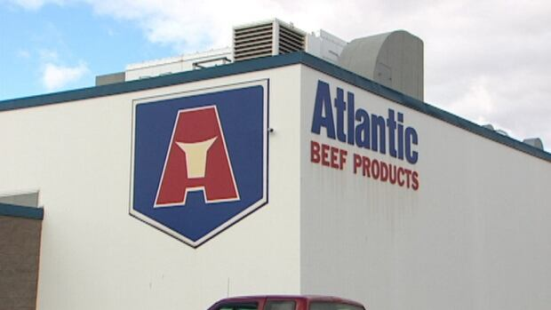 A man in his 30s was taken to hospital with undisclosed injuries after being pinned by a bull at the Atlantic Beef Products Plant in Albany, P.E.I.