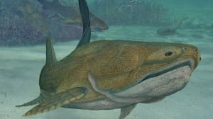 The armoured fish shown in this animated reconstruction lived over 400 million years ago but had the jaw characteristics seen in modern fish and most other vertebrates, including humans.