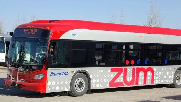 Calgary Transit is buying 150 new diesel buses from New Flyer worth about $400,000 each.
