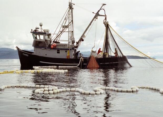 nl-alaska-seiner-alaska-seafood-marketing-institute-20130927