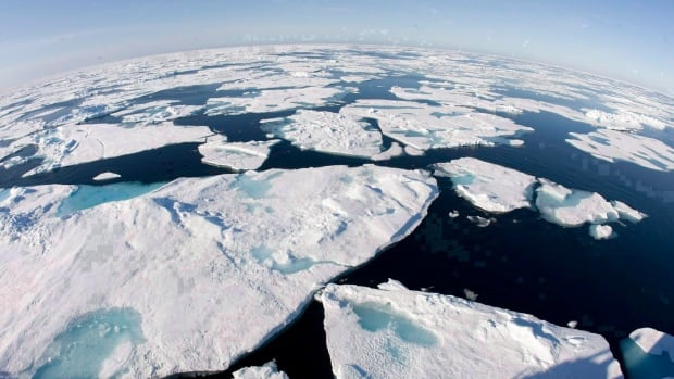 Ice floes float in Baffin Bay above the Arctic circle on July 10, 2008.Researchers say the loss of sea ice in Russia lets more energy go from the ocean into the air. That would weaken the atmospheric forces that usually keep cold air trapped in the Arctic.