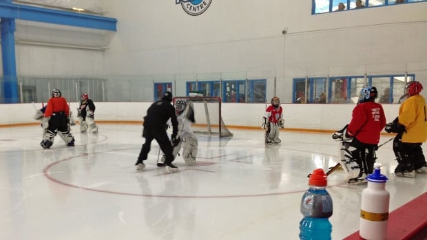 A new season of elite hockey training is underway in Sudbury, but Hockey Canada is worried about research that shows many families believe hockey is too expensive, not safe enough — and not fun enough.