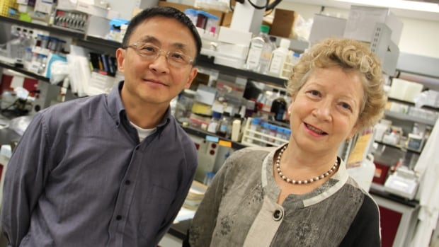 Fiona Smaill, right, and Zhou Xing, both of the McMaster Immunology Research Centre, are leading a team of researchers in the testing of a new tuberculosis booster vaccine.
