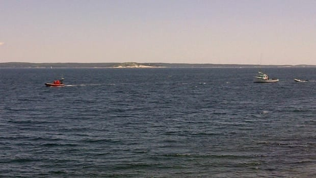 A diver went missing in Birchy Head Saturday. He was later found dead on shore.