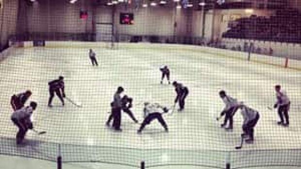 mi-hockey-nhl-yk