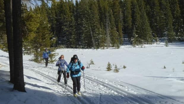 Cross-country skiers take to Iron Springs trail in West Bragg Creek.