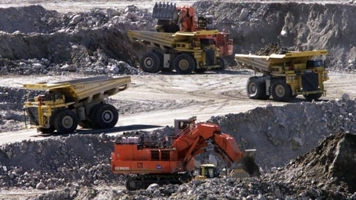 botswanas economy depends on diamond mining essay