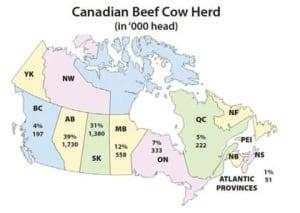 fi-beef-info-canada-beef