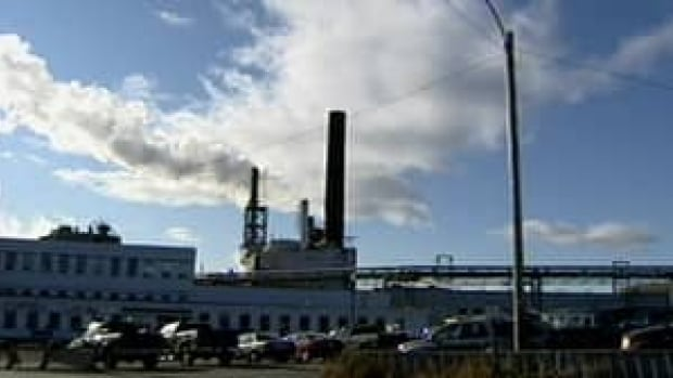 An unnamed company is in talks with the provincial government over Grand Falls-Windsor's former paper mill site.